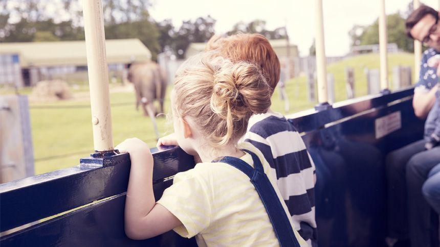ZSL Whipsnade Zoo. 10% Teachers discount when booking online