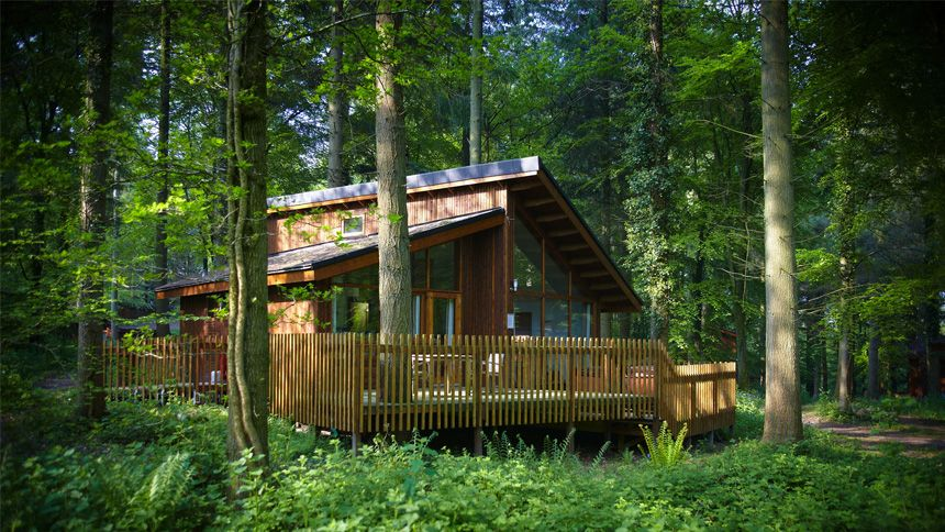 Luxury Woodland Lodges. 10% Teachers discount