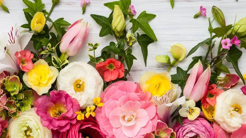 Appleyard Flowers. 20% Teachers discount
