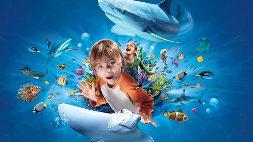Sea Life Scarborough. Huge savings for Teachers